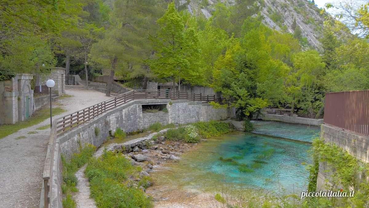Le sorgenti del fiume verde