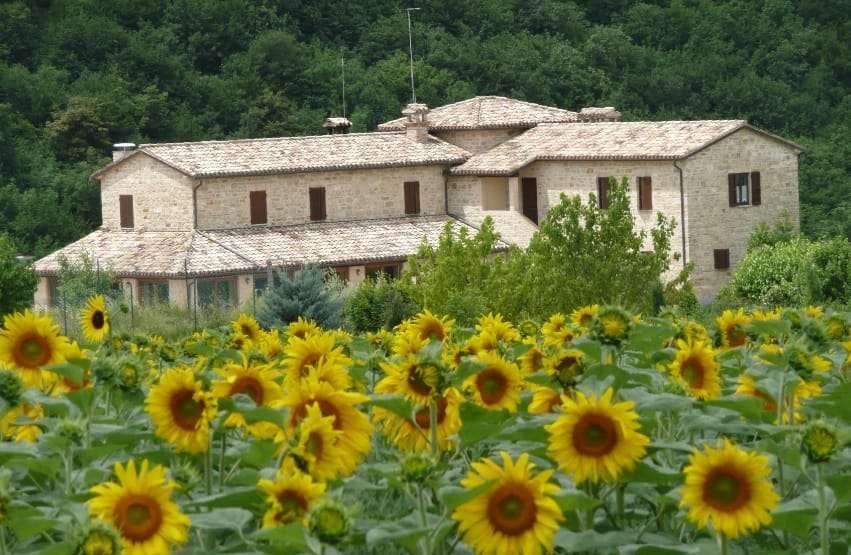 Casale Fabrizi - La struttura